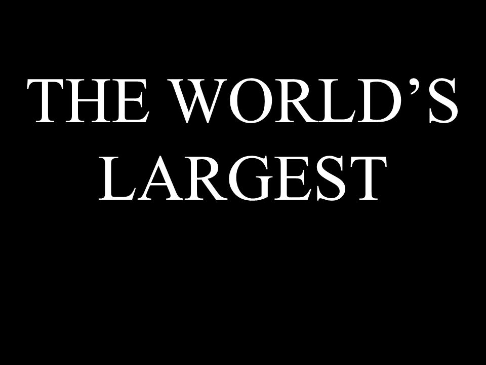 THE WORLDS LARGEST