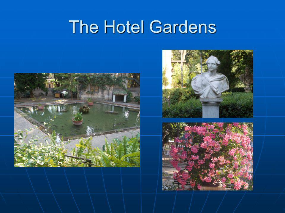 The Hotel Gardens