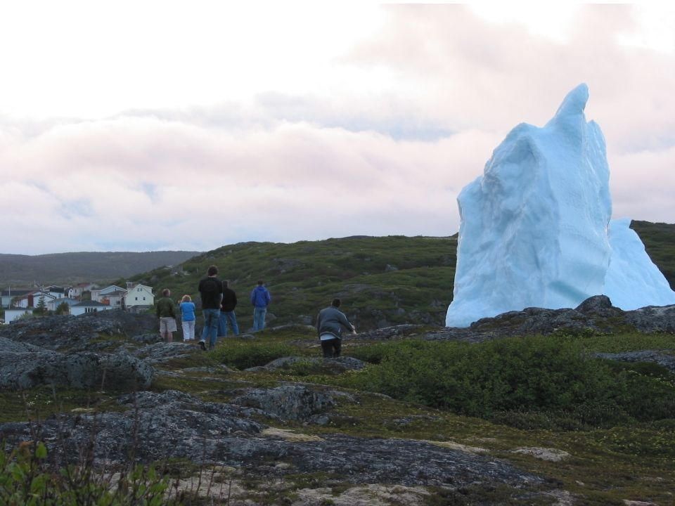 Icebergs sometimes float directly into our harbour