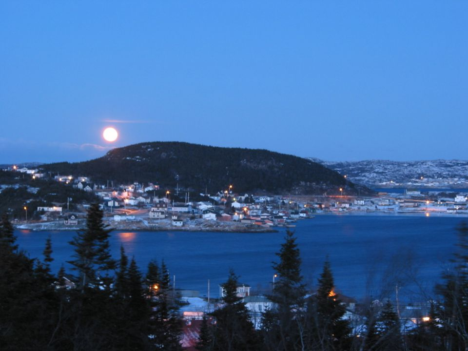 Moonlit night on St. Anthony Harbour