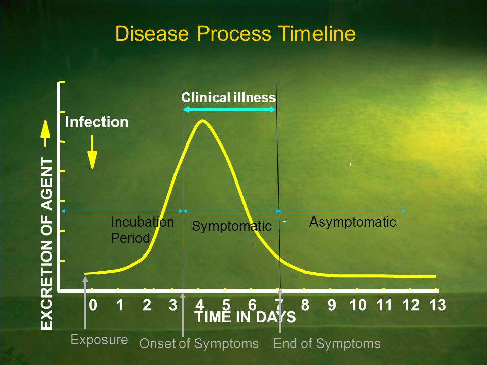 012345678910111213 TIME IN DAYS EXCRETION OF AGENT Clinical illness Infection Disease Process Timeline Incubation Period Asymptomatic Symptomatic Expo