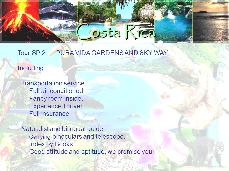 Tour SP 2. PURA VIDA GARDENS AND SKY WAY Including: Transportation service: Full air conditioned Fancy room inside. Experienced driver. Full insurance