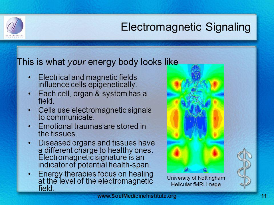 www.SoulMedicineInstitute.org11 Electromagnetic Signaling Electrical and magnetic fields influence cells epigenetically.