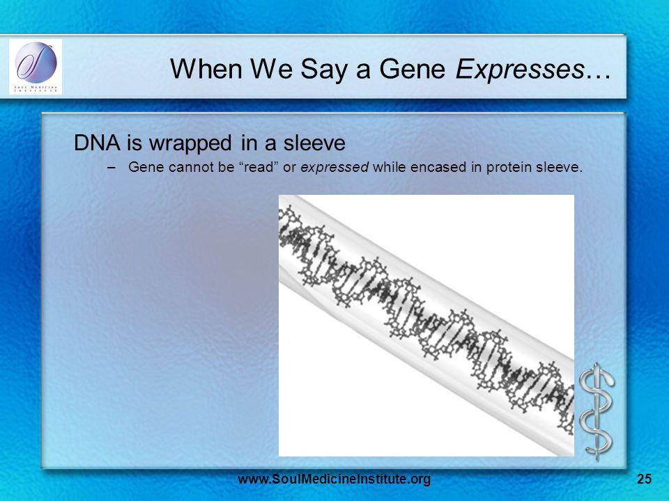 www.SoulMedicineInstitute.org25 When We Say a Gene Expresses… DNA is wrapped in a sleeve –Gene cannot be read or expressed while encased in protein sleeve.
