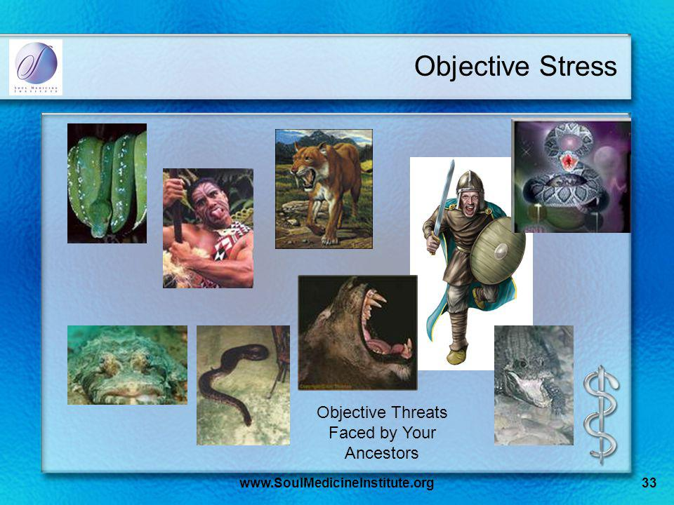 www.SoulMedicineInstitute.org33 Objective Stress Objective Threats Faced by Your Ancestors