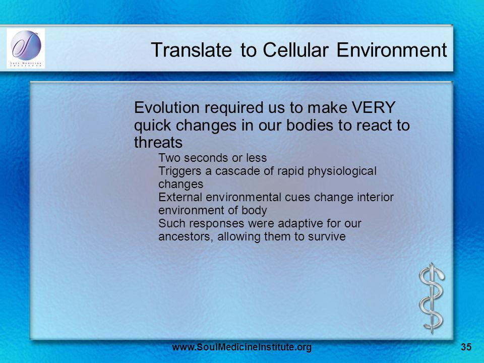 www.SoulMedicineInstitute.org35 Translate to Cellular Environment Evolution required us to make VERY quick changes in our bodies to react to threats Two seconds or less Triggers a cascade of rapid physiological changes External environmental cues change interior environment of body Such responses were adaptive for our ancestors, allowing them to survive