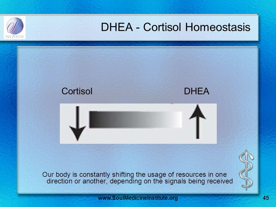 www.SoulMedicineInstitute.org45 DHEA - Cortisol Homeostasis Our body is constantly shifting the usage of resources in one direction or another, depending on the signals being received CortisolDHEA