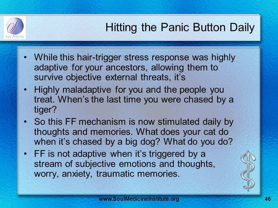 www.SoulMedicineInstitute.org46 Hitting the Panic Button Daily While this hair-trigger stress response was highly adaptive for your ancestors, allowin