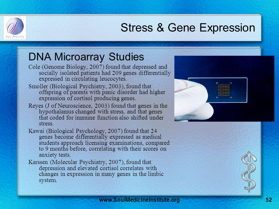 www.SoulMedicineInstitute.org52 Stress & Gene Expression DNA Microarray Studies Cole (Genome Biology, 2007) found that depressed and socially isolated patients had 209 genes differentially expressed in circulating leucocytes.