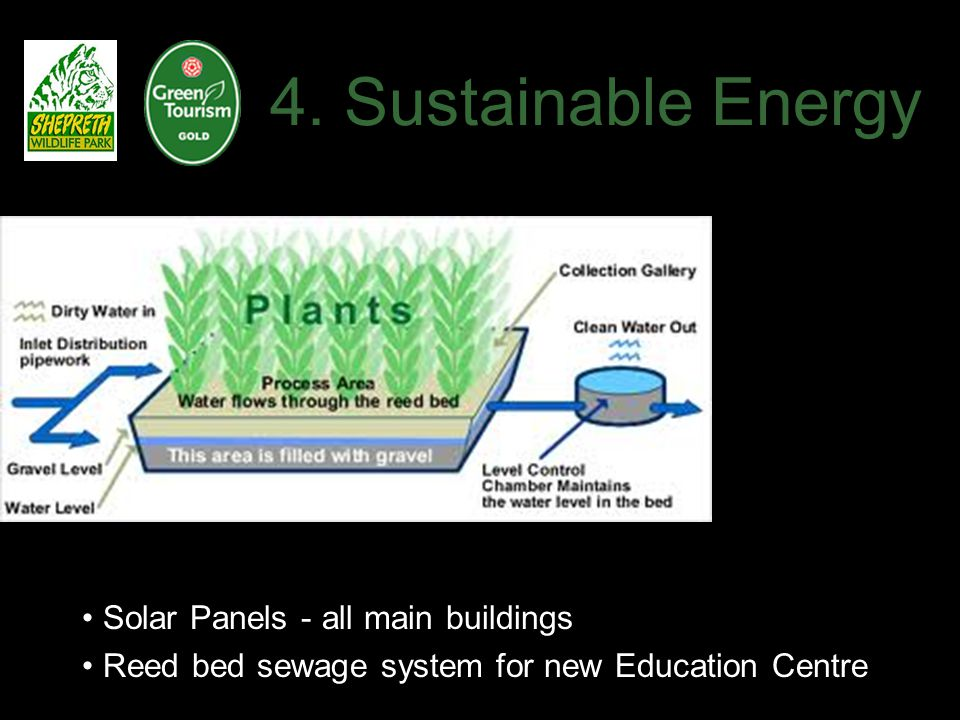 4. Sustainable Energy Solar Panels - all main buildings Reed bed sewage system for new Education Centre