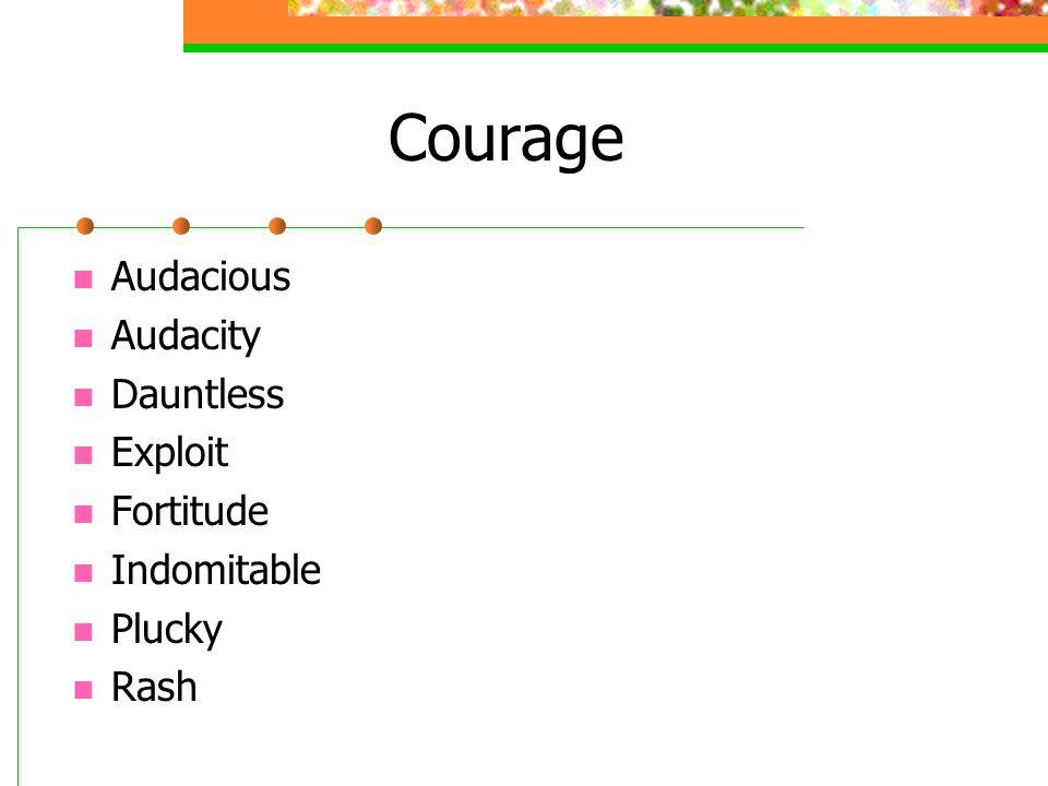 Courage Audacious Audacity Dauntless Exploit Fortitude Indomitable Plucky Rash