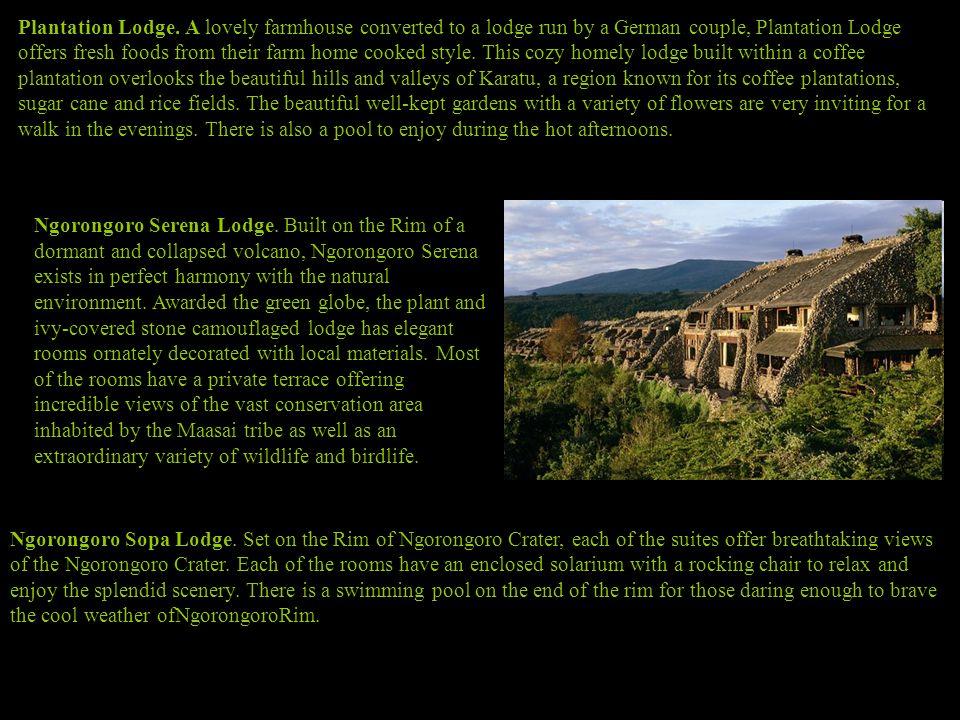 Plantation Lodge.