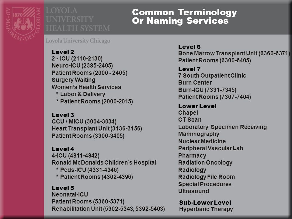 Level 2 2 - ICU (2110-2130) Neuro-ICU (2385-2405) Patient Rooms (2000 - 2405) Surgery Waiting Womens Health Services * Labor & Delivery * Patient Rooms (2000-2015) CCU / MICU (3004-3034) Heart Transplant Unit (3136-3156) Patient Rooms (3300-3405) Level 3 4-ICU (4811-4842) Ronald McDonalds Childrens Hospital * Peds-ICU (4331-4346) * Patient Rooms (4302-4396) Level 4 Level 5 Level 6 Level 7 Neonatal-ICU Patient Rooms (5360-5371) Rehabilitation Unit (5302-5343, 5392-5403) Bone Marrow Transplant Unit (6360-6371) Patient Rooms (6300-6405) 7 South Outpatient Clinic Burn Center Burn-ICU (7331-7345) Patient Rooms (7307-7404) Sub-Lower Level Chapel CT Scan Laboratory Specimen Receiving Mammography Nuclear Medicine Peripheral Vascular Lab Pharmacy Radiation Oncology Radiology Radiology File Room Special Procedures Ultrasound Lower Level Hyperbaric Therapy Common Terminology Or Naming Services