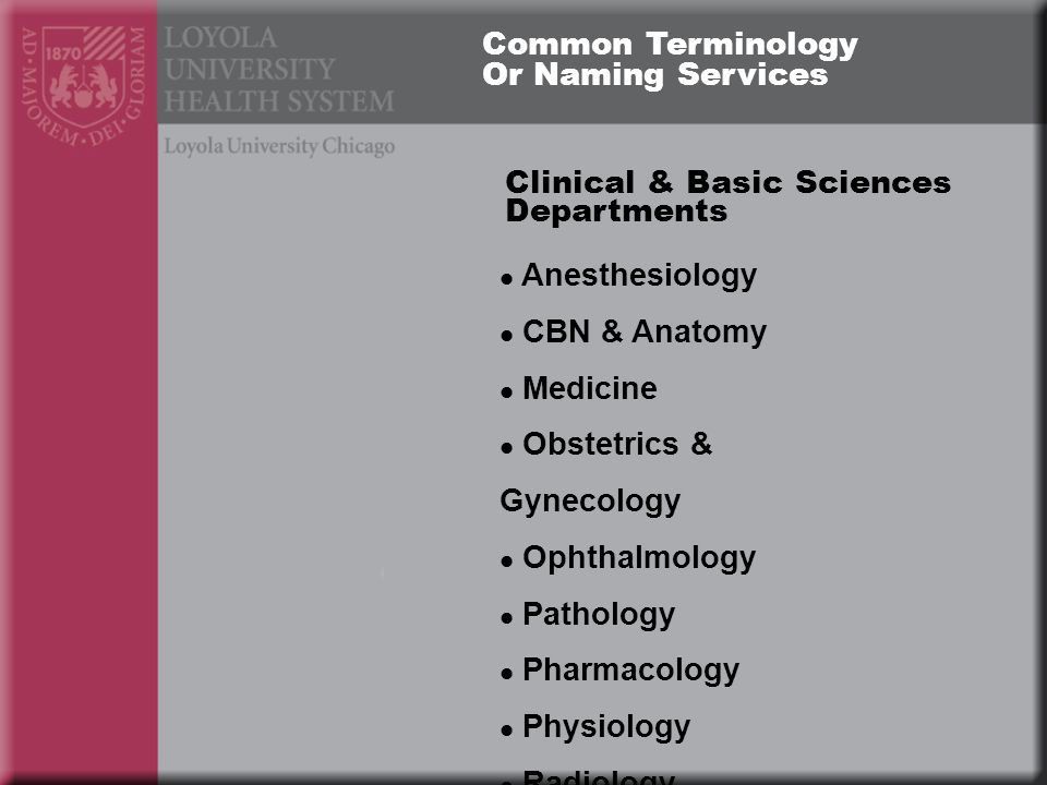 Clinical & Basic Sciences Departments Anesthesiology CBN & Anatomy Medicine Obstetrics & Gynecology Ophthalmology Pathology Pharmacology Physiology Radiology Common Terminology Or Naming Services