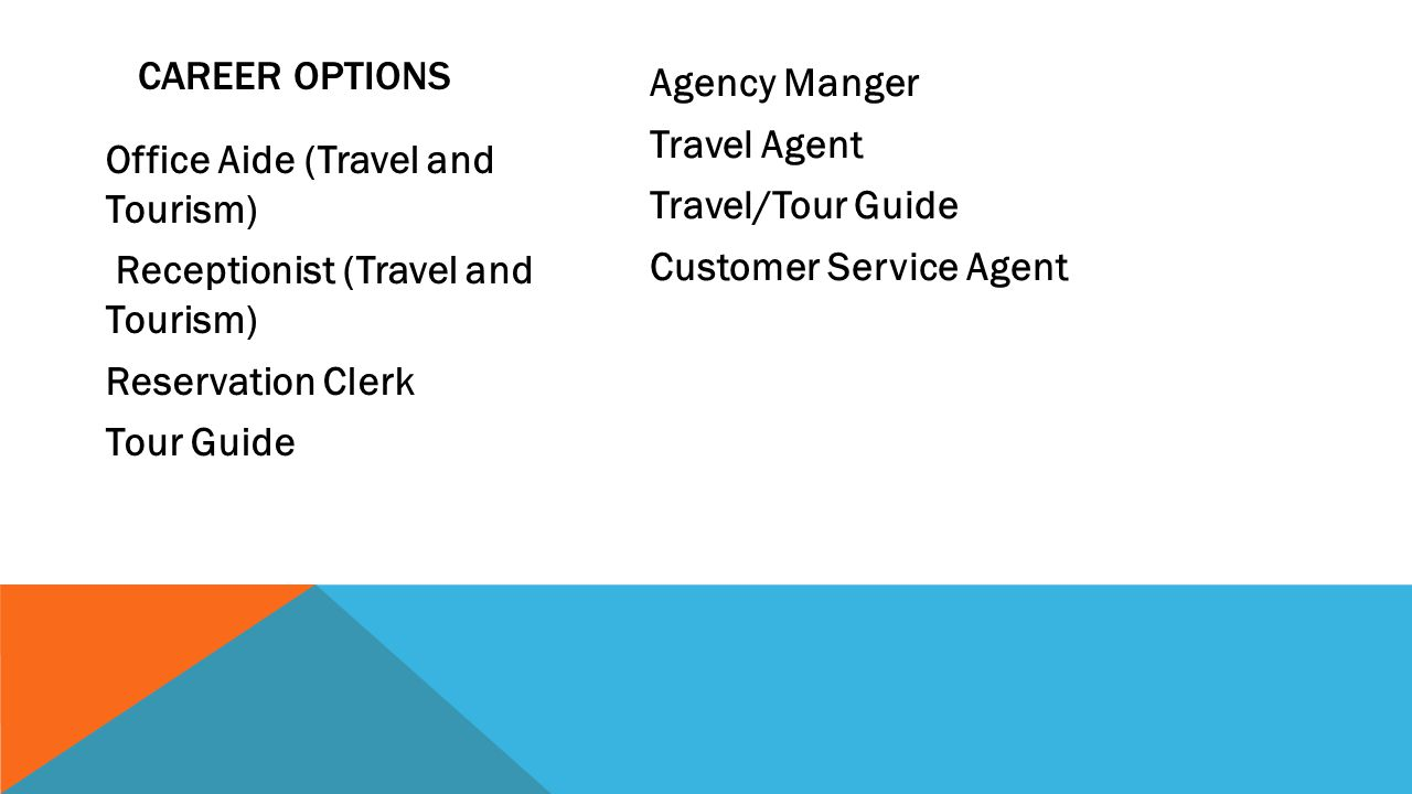 TRAVEL AND TOURISM TRAVEL INTERMEDIARY SECTOR