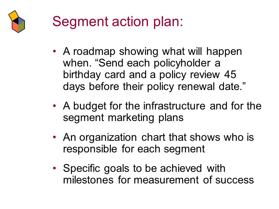 Segment action plan: A roadmap showing what will happen when.