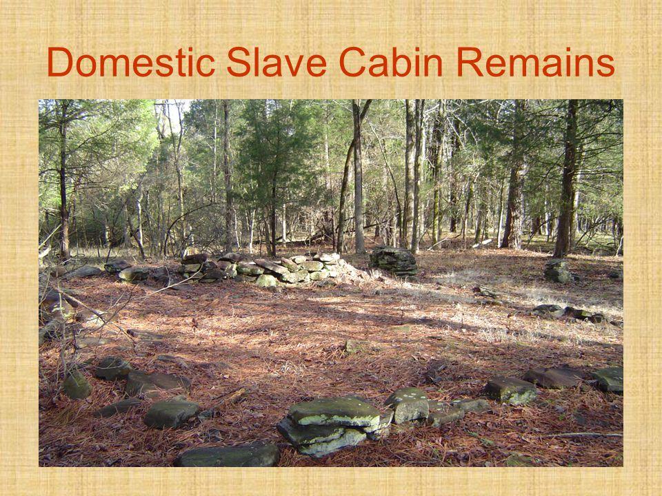 Domestic Slave Cabin Remains