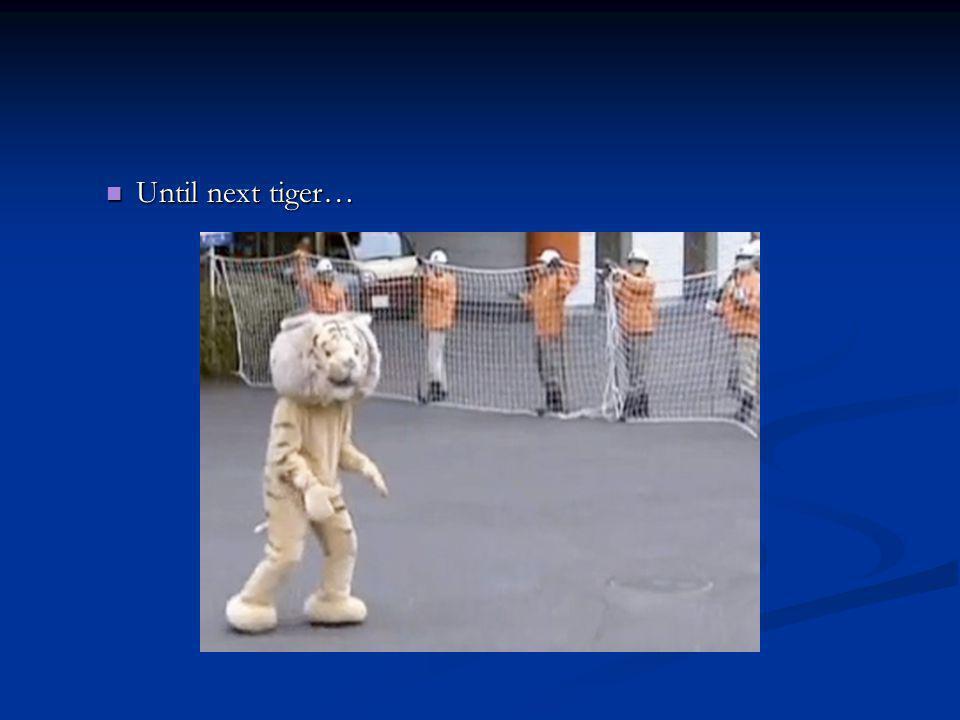Until next tiger… Until next tiger…