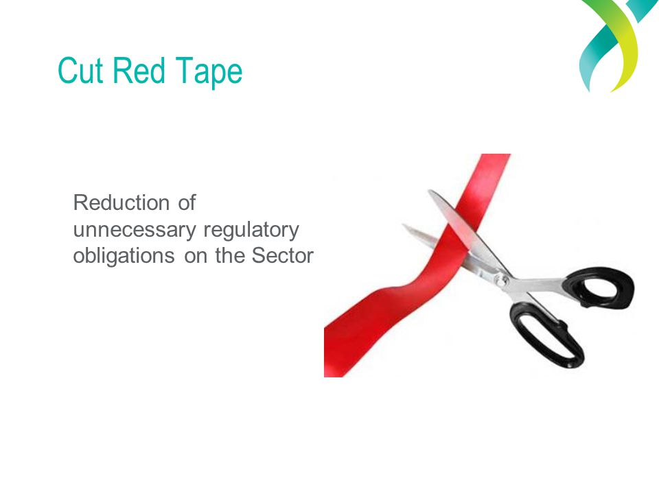 Cut Red Tape Reduction of unnecessary regulatory obligations on the Sector