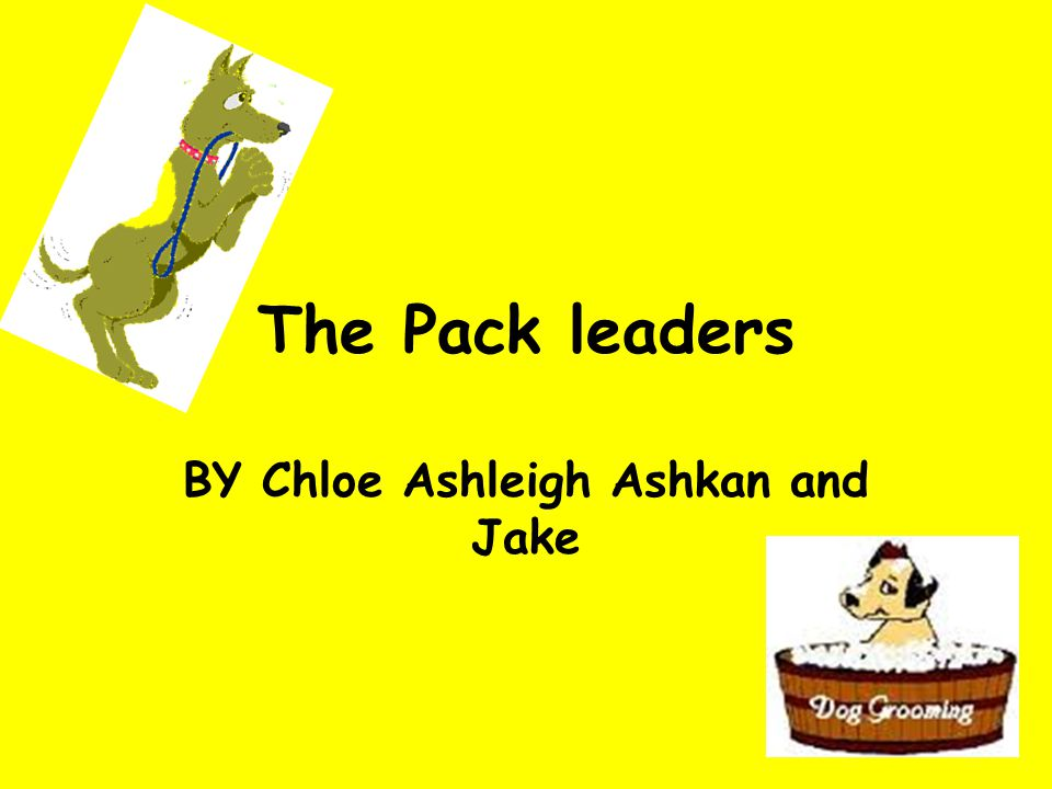 The Pack leaders BY Chloe Ashleigh Ashkan and Jake