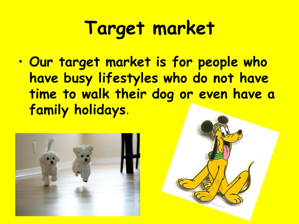 Target market Our target market is for people who have busy lifestyles who do not have time to walk their dog or even have a family holidays.