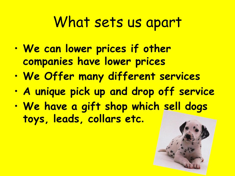 What sets us apart We can lower prices if other companies have lower prices We Offer many different services A unique pick up and drop off service We have a gift shop which sell dogs toys, leads, collars etc.