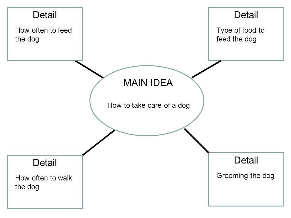 MAIN IDEA How to take care of a dog Detail Type of food to feed the dog Grooming the dog How often to feed the dog How often to walk the dog