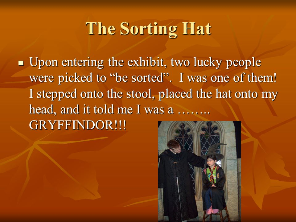The Sorting Hat Upon entering the exhibit, two lucky people were picked to be sorted.