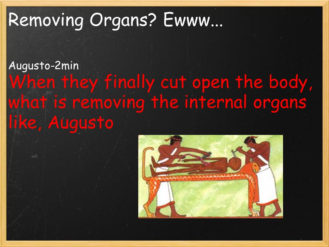 Removing Organs? Ewww... Augusto-2min When they finally cut open the body, what is removing the internal organs like, Augusto