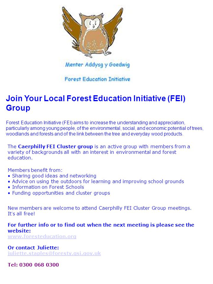 Join Your Local Forest Education Initiative (FEI) Group Forest Education Initiative (FEI) aims to increase the understanding and appreciation, particularly among young people, of the environmental, social, and economic potential of trees, woodlands and forests and of the link between the tree and everyday wood products.