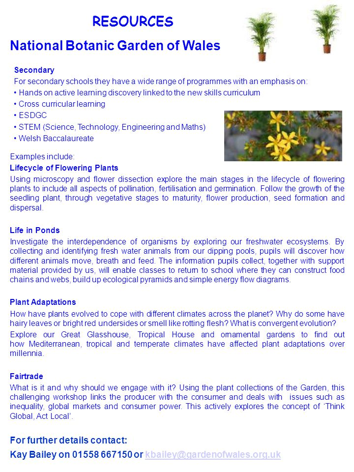 RESOURCES National Botanic Garden of Wales Secondary For secondary schools they have a wide range of programmes with an emphasis on: Hands on active learning discovery linked to the new skills curriculum Cross curricular learning ESDGC STEM (Science, Technology, Engineering and Maths) Welsh Baccalaureate For further details contact: Kay Bailey on 01558 667150 or kbailey@gardenofwales.org.ukkbailey@gardenofwales.org.uk Examples include: Lifecycle of Flowering Plants Using microscopy and flower dissection explore the main stages in the lifecycle of flowering plants to include all aspects of pollination, fertilisation and germination.