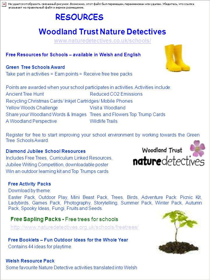 RESOURCES Woodland Trust Nature Detectives www.naturedetectives.co.uk/schools/ Free Resources for Schools – available in Welsh and English Green Tree Schools Award Take part in activities = Earn points = Receive free tree packs Points are awarded when your school participates in activities.