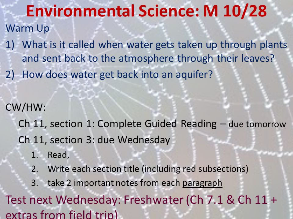 Environmental Science: M 10/28 Warm Up 1)What is it called when water gets taken up through plants and sent back to the atmosphere through their leave