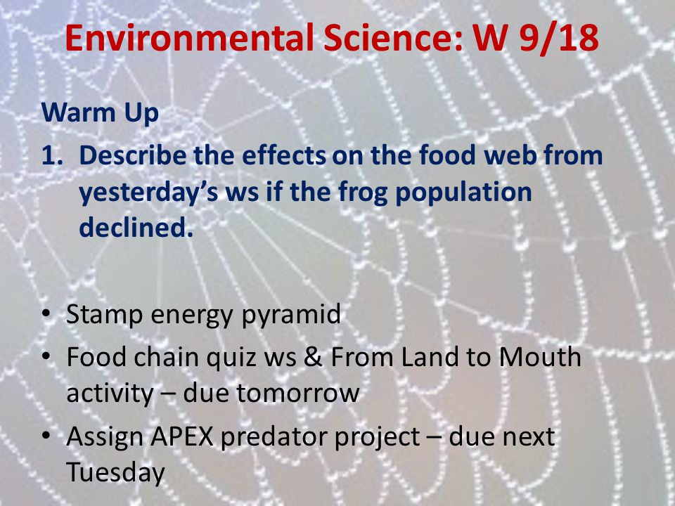 Environmental Science: W 9/18 Warm Up 1.Describe the effects on the food web from yesterdays ws if the frog population declined. Stamp energy pyramid