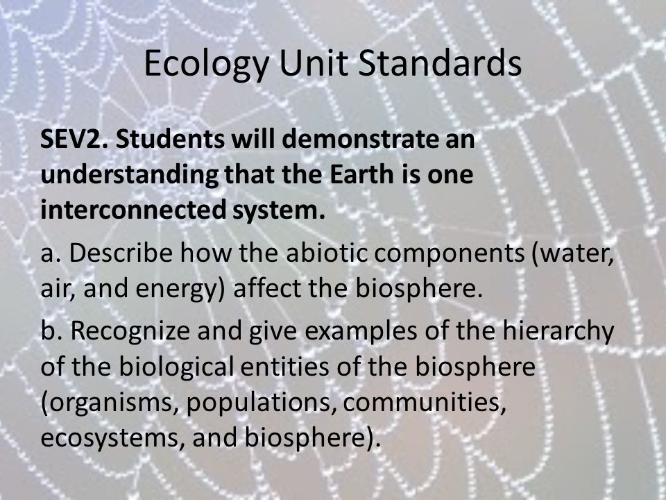 Ecology Unit Standards SEV2. Students will demonstrate an understanding that the Earth is one interconnected system. a. Describe how the abiotic compo