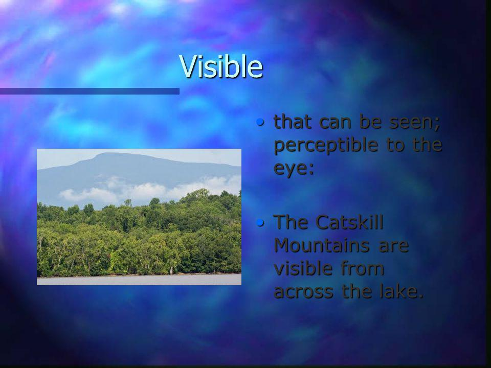 Visible that can be seen; perceptible to the eye: The Catskill Mountains are visible from across the lake.
