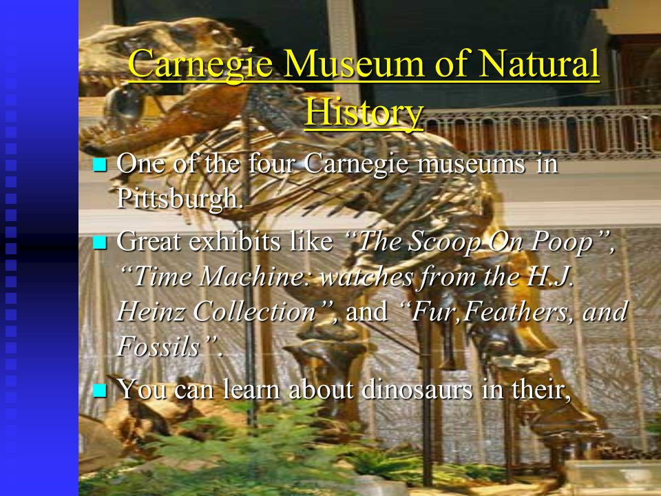 Carnegie Museum of Natural History One of the four Carnegie museums in Pittsburgh.