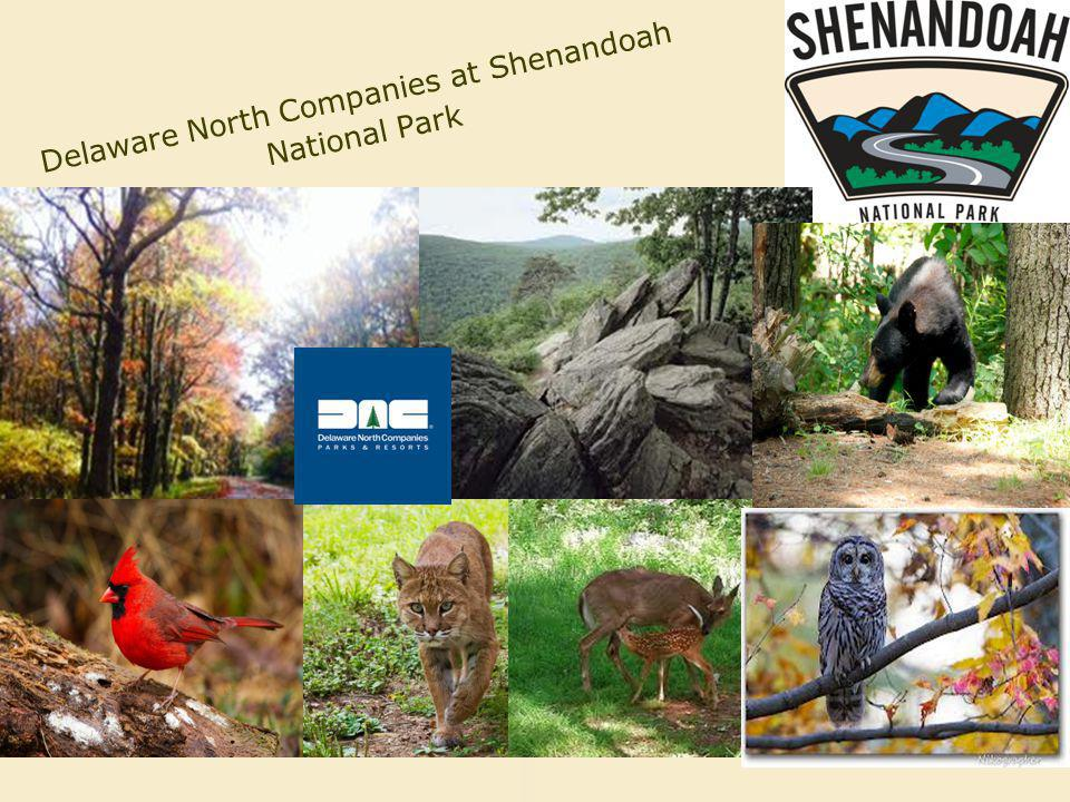Delaware North Companies at Shenandoah National Park