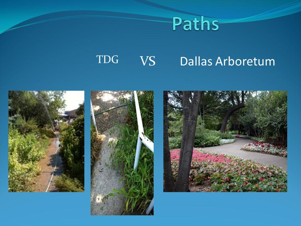 TDG Dallas ArboretumVS