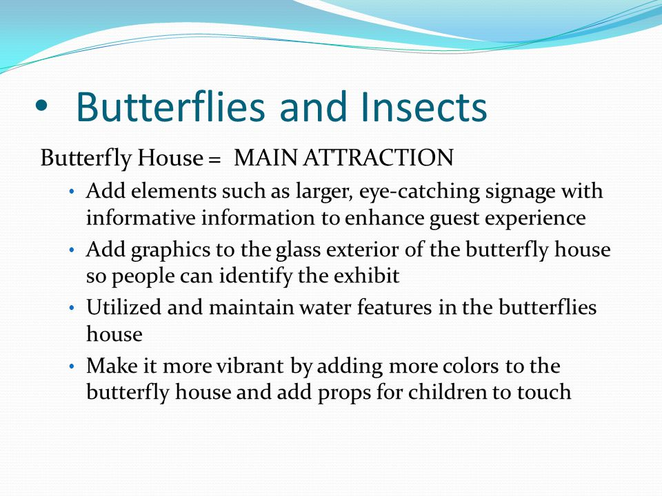Butterflies and Insects Butterfly House = MAIN ATTRACTION Add elements such as larger, eye-catching signage with informative information to enhance gu