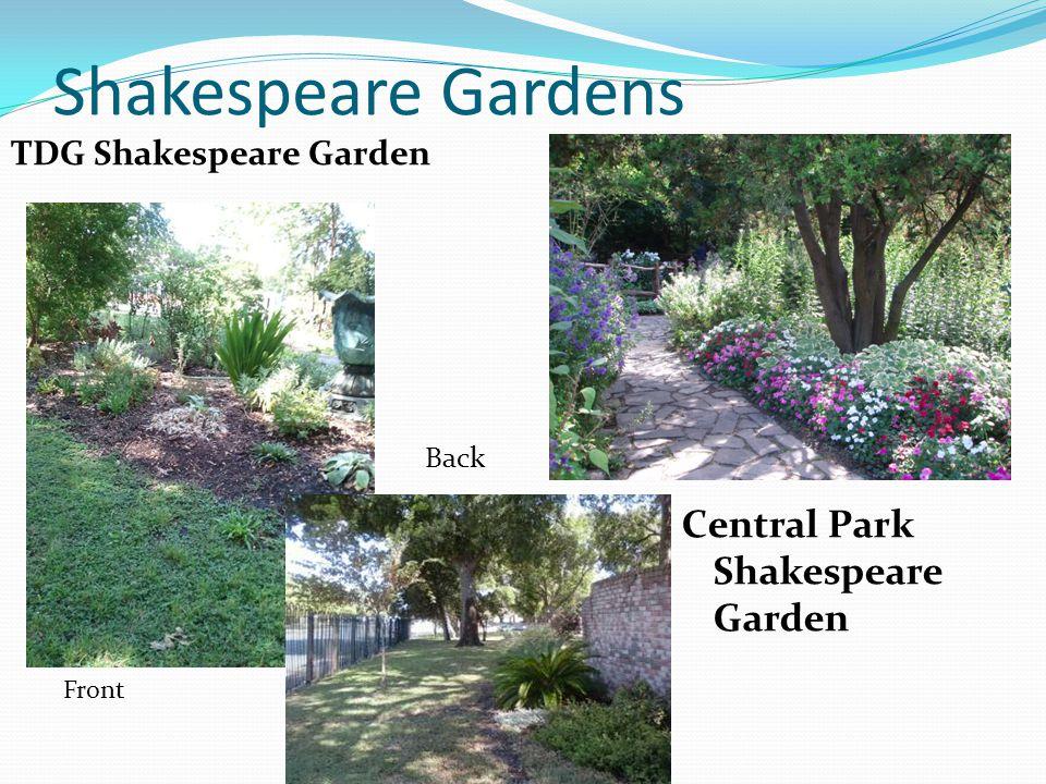 Shakespeare Gardens TDG Shakespeare Garden Central Park Shakespeare Garden Back Front