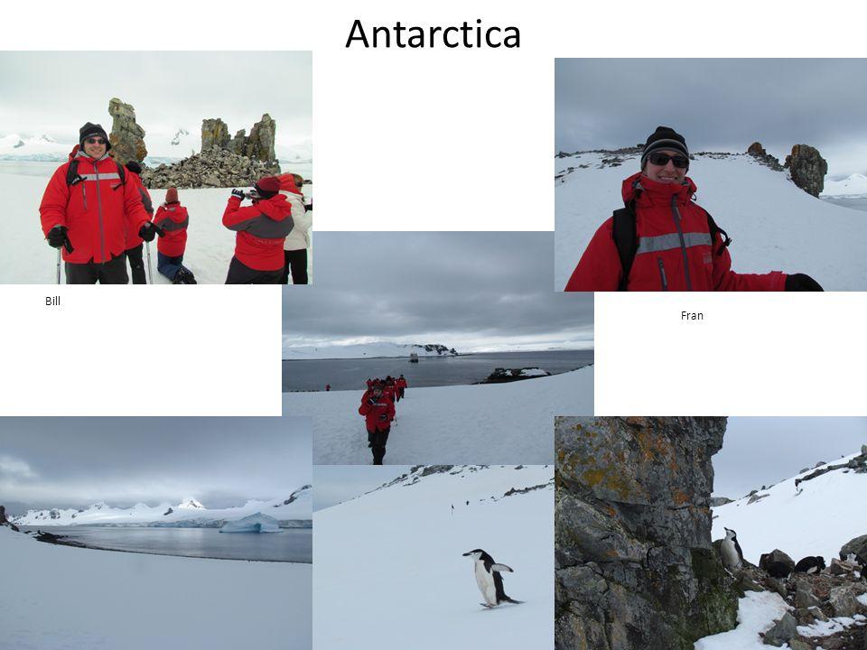 Antarctica Bill Fran
