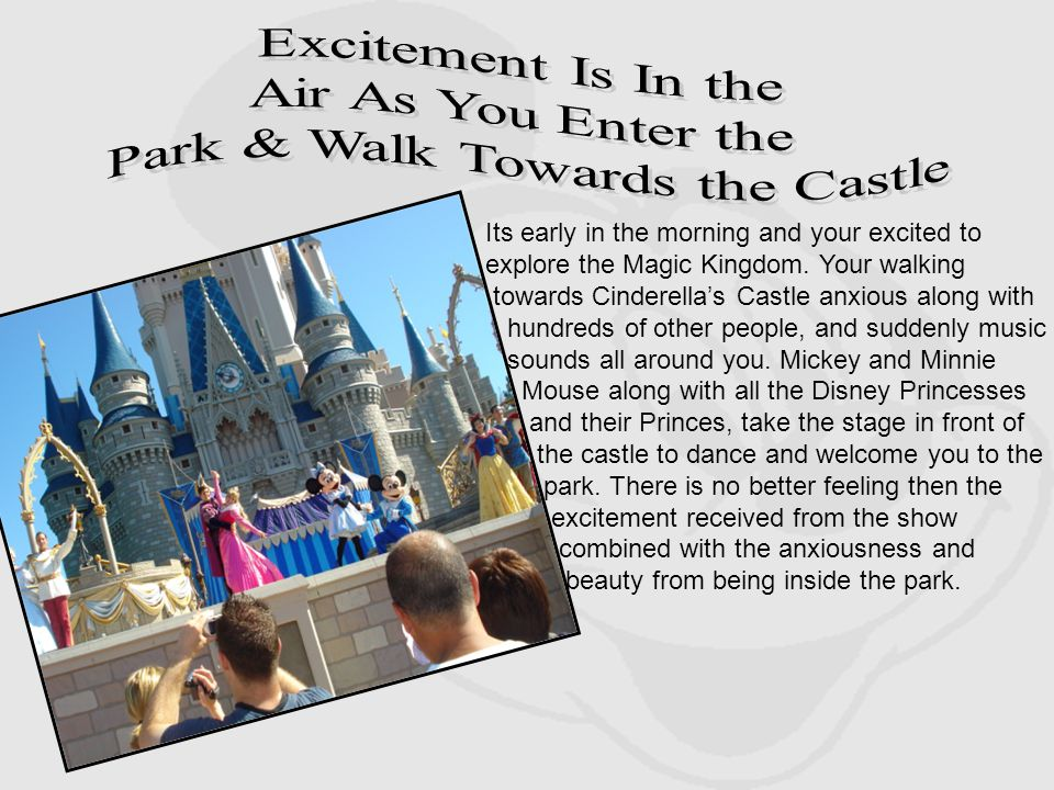 Its early in the morning and your excited to explore the Magic Kingdom. Your walking towards Cinderellas Castle anxious along with hundreds of other p