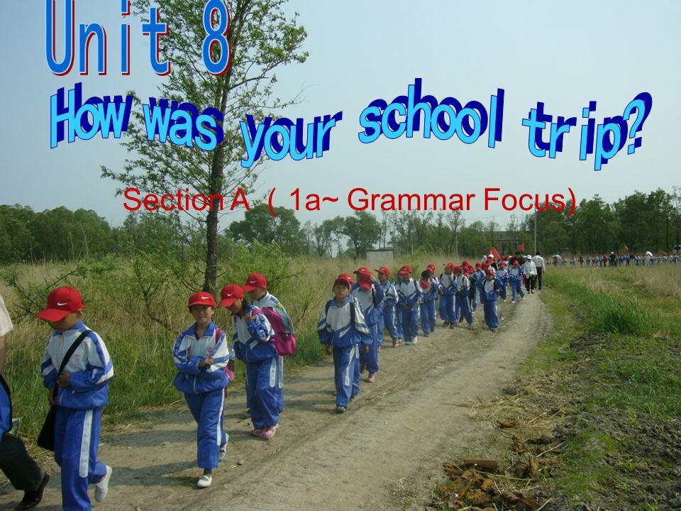 Section A 1a~ Grammar Focus)