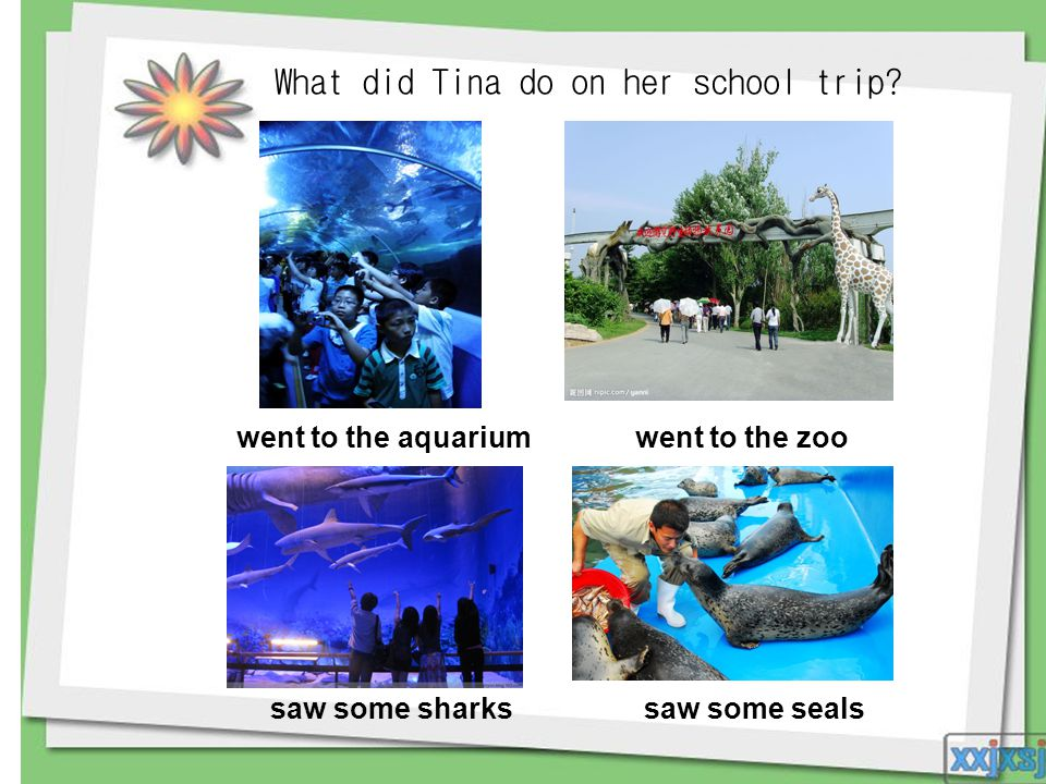 What did Tina do on her school trip? went to the aquariumwent to the zoo saw some sharks saw some seals