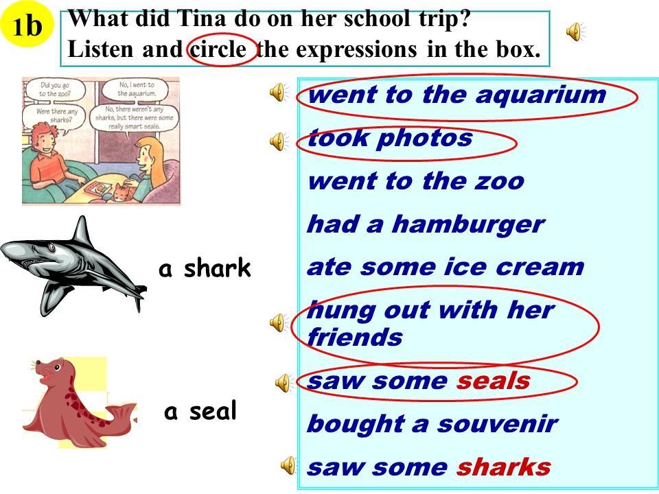 What did Tina do on her school trip. Listen and circle the expressions in the box.