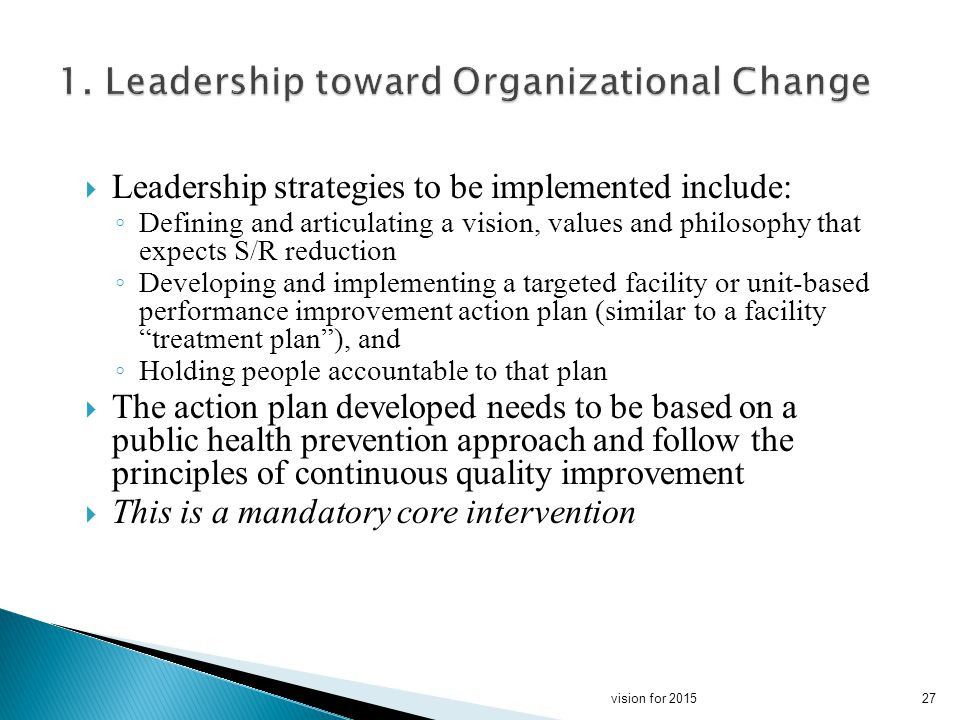 Leadership strategies to be implemented include: Defining and articulating a vision, values and philosophy that expects S/R reduction Developing and implementing a targeted facility or unit-based performance improvement action plan (similar to a facility treatment plan), and Holding people accountable to that plan The action plan developed needs to be based on a public health prevention approach and follow the principles of continuous quality improvement This is a mandatory core intervention 27vision for 2015