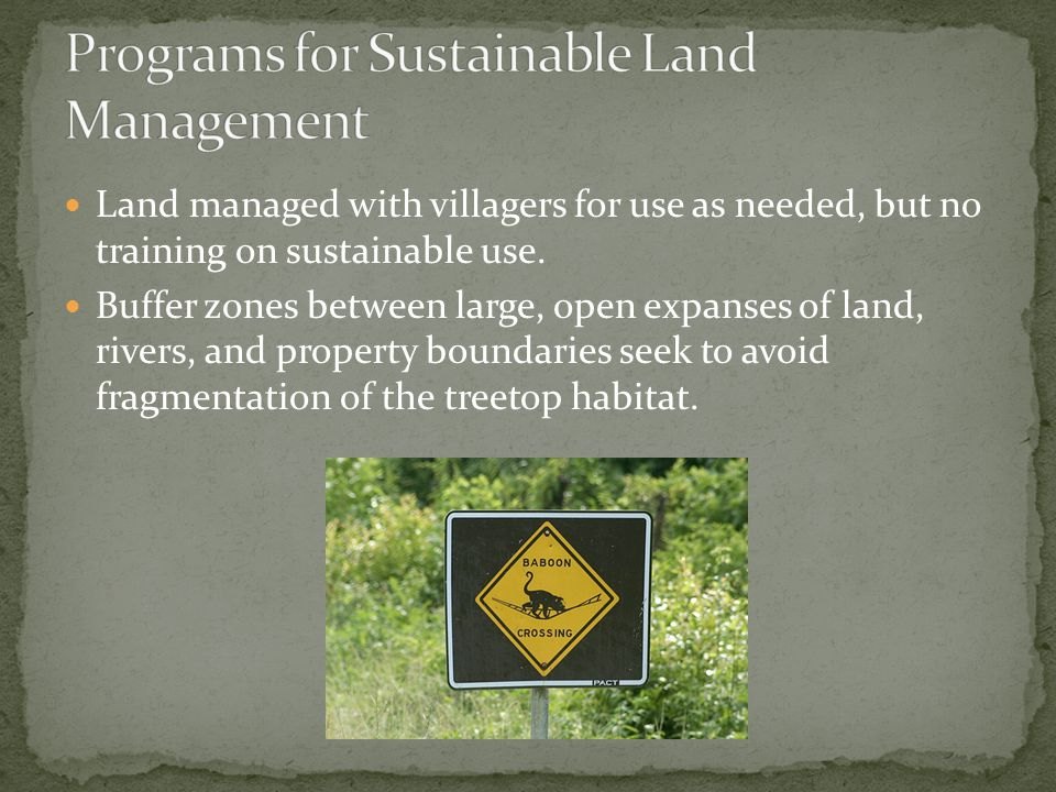 Land managed with villagers for use as needed, but no training on sustainable use.