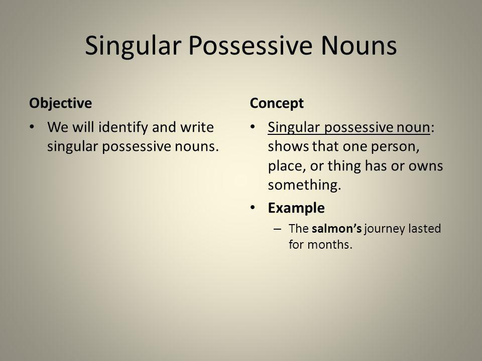 Singular Possessive Nouns Objective We will identify and write singular possessive nouns. Concept Singular possessive noun: shows that one person, pla