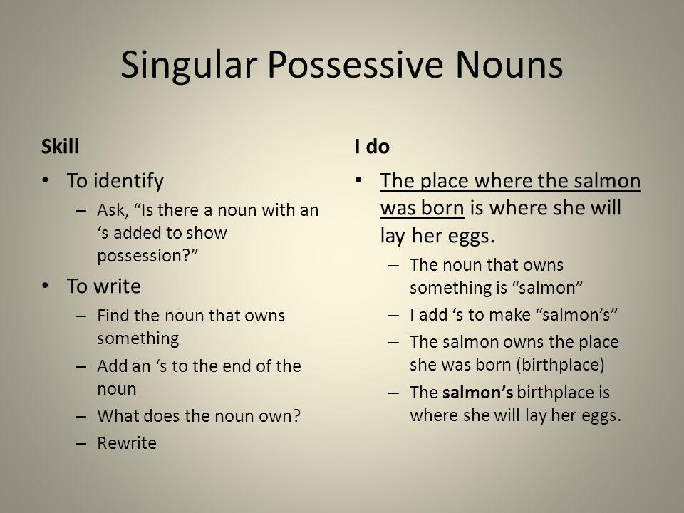 Singular Possessive Nouns Skill To identify – Ask, Is there a noun with an s added to show possession? To write – Find the noun that owns something –